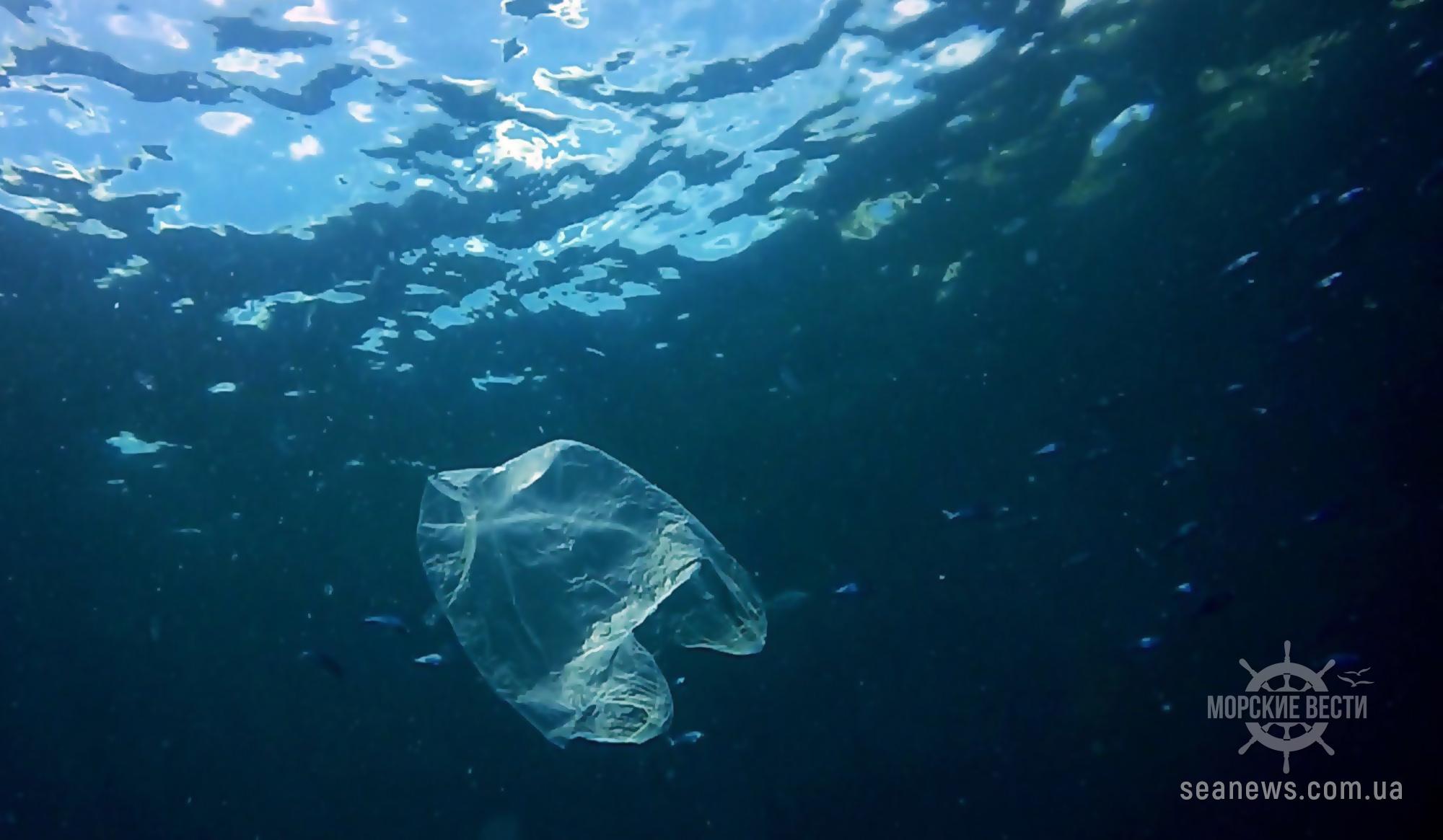 Ученые измерили количество микропластика в Черном море